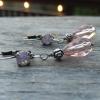 Pink and Rose Antique Silver Swarovski Teardrop Earrings